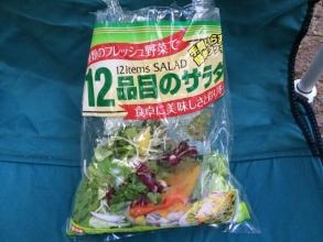 サラダのホットサンド