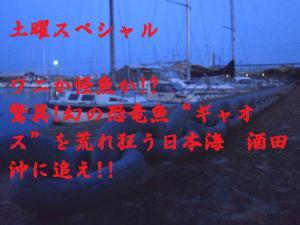 P42105701.jpg