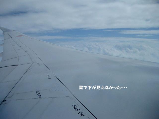 20131119-030.jpg