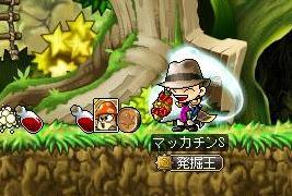 Maple9437a.jpg