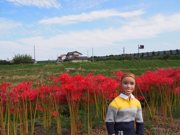 kakegawa-20140921-04s.jpg
