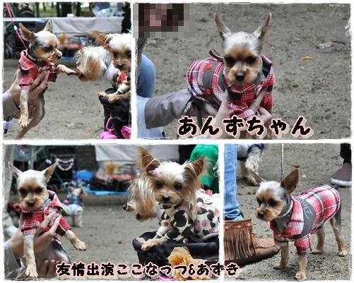 8_20111101074850.jpg