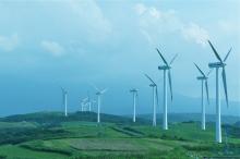 $MAMEJI-風車の巣
