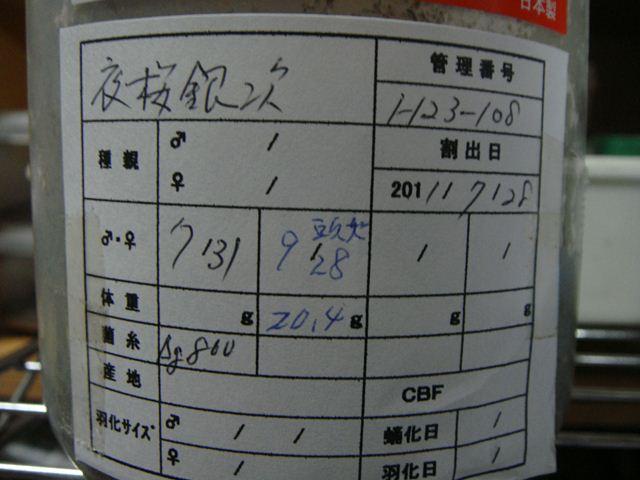 DSC02459_R.jpg