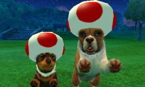 dogs0451.jpg