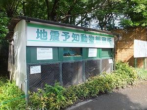 hamura8.jpg