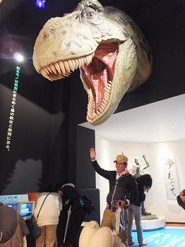 kaiyodo-figure-museum7.jpg