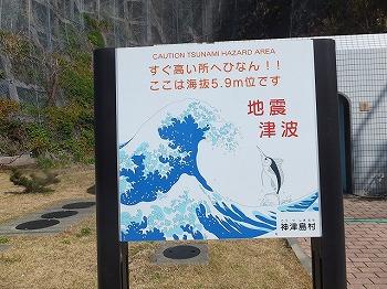 kouzushima79.jpg