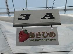 kumagaya36.jpg