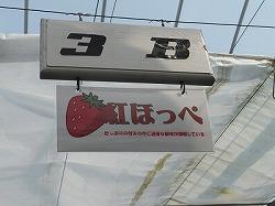 kumagaya37.jpg