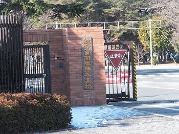 kumagaya5.jpg