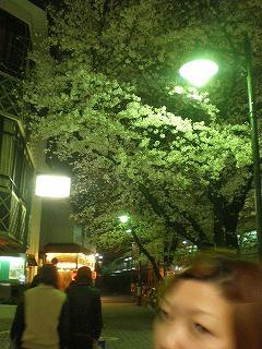 mitaka-street91.jpg