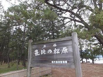 tsuruga75.jpg
