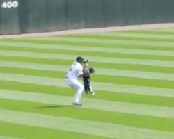 Kid runs on field during White Sox game