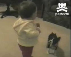 Babys first steps interrupted by dog poop
