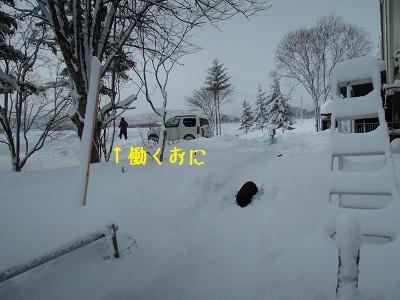 b20130126-DSCN8373.jpg