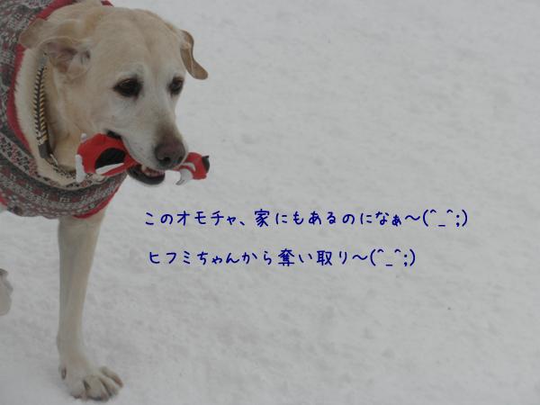 maruomotya_201402092043435c7.jpg