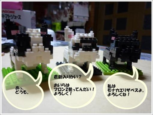 20120307_3.jpg