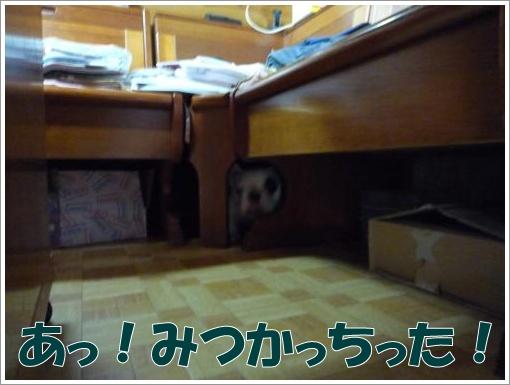 20120310_2.jpg