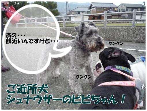 20120312_3.jpg