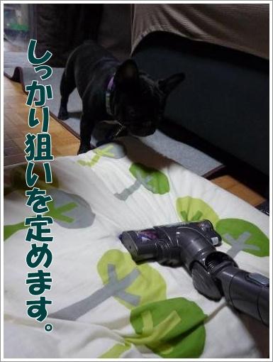 20120313_2.jpg
