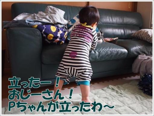 20120321_6.jpg