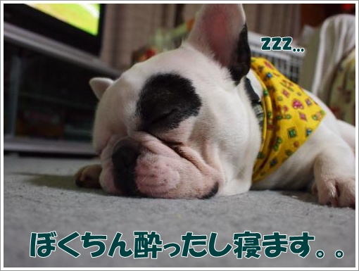 20120328_6.jpg