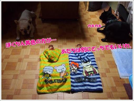 20120501_5.jpg