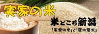 まーちんのブログ-魚沼産コシヒカリ