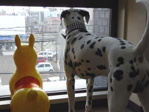 まーちんのブログ-窓からの眺め