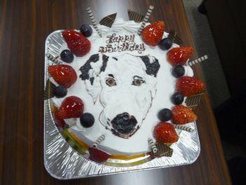 まーちんのブログ-バースデーケーキ