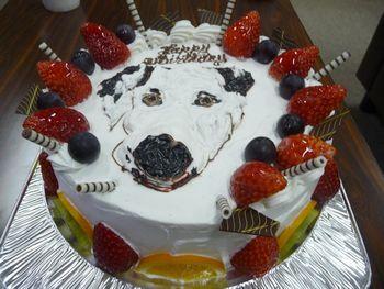 まーちんのブログ-ケーキ