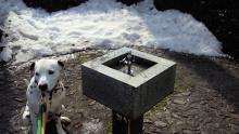 まーちんのブログ-水飲み場