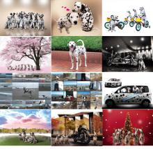 まーちんのブログ-カレンダー