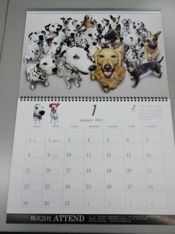 まーちんのブログ-1月