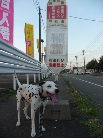 まーちんのブログ-3