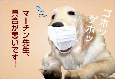 まーちんのブログ-1