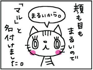 1+5_convert_20111226134344.jpg