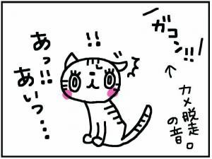 かめ+3_convert_20111230174655