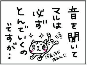 かめ+4_convert_20111230174732