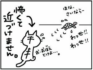 かめ+6_convert_20111230174811
