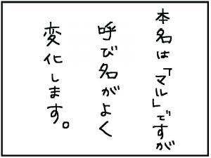 なまえ1_convert_20111231193457