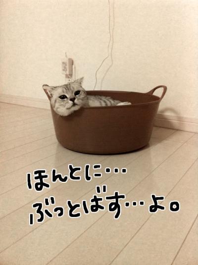 ぶっとばす_convert_20120104151324