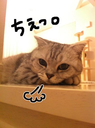 ちえっ_convert_20120111231222