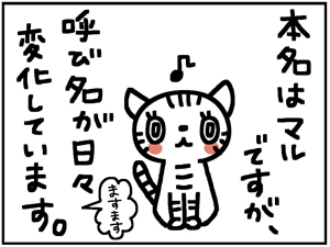 すっちゃん1