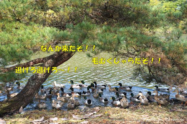 2014101007.jpg