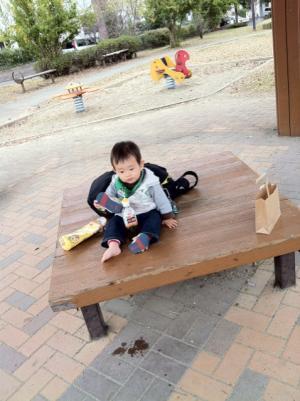 taigakouen_convert_20111110220605.jpg