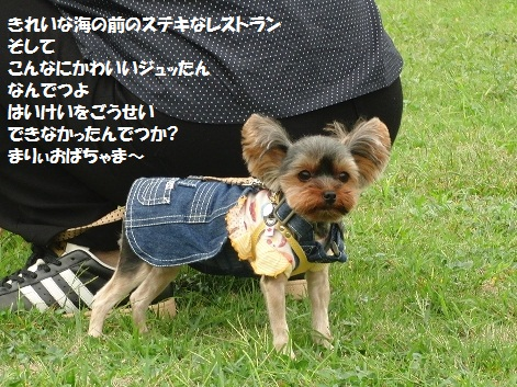 2011102422.jpg