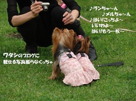 2011102427_20111025202045.jpg