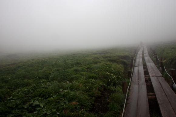 阿弥陀池湿原